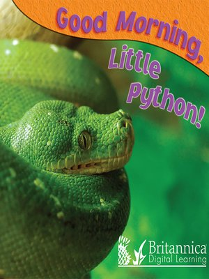 cover image of Good Morning, Little Python!